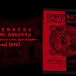 BABYMETAL 初めて買ったデロリアン 武道館『REDNIGHT & BLACKNIGHT』のお話【前編】